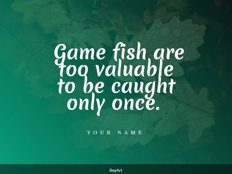 70+ أسعار الصيد: اختيار حصري